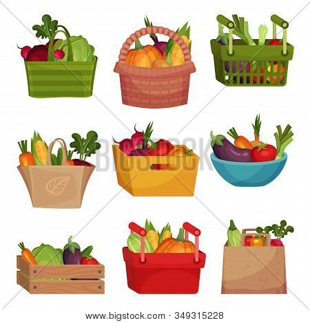 Vegetables Rested In Wooden And Plastic Baskets And Paper Bags Vector Set