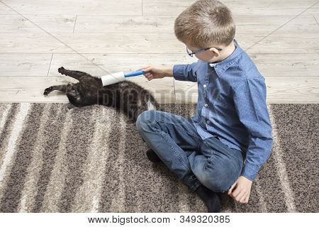School-age Boy Sits On The Carpet And Plays With The Cat. The Cat Lies On The Carpet Happy With Care
