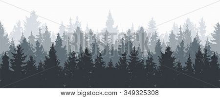 Vector Forest Background. Gray Winter Or Spring Woods, Nature Landscape With Evergreen Coniferous Tr