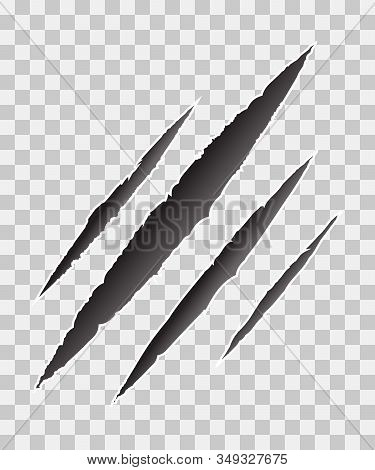 Claws Scratches - Vector Isolated On Transparent Background. Monster Tear Claw Scratch Mark. Cat Tig