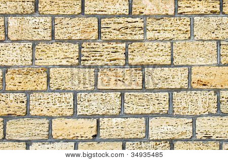 Shell limestone wall texture background.