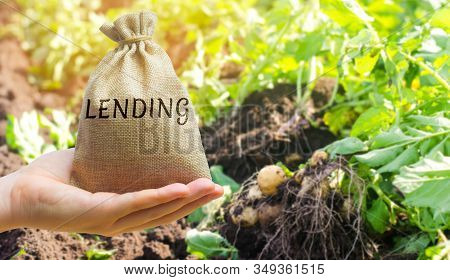 Money Bag With The Word Lending On The Background Of Plantations. The Concept Of Agricultural Lendin