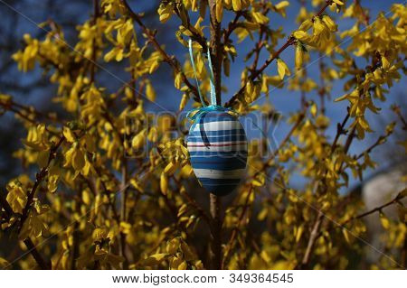 Easter Egg In The Forsythia In The Eastertime