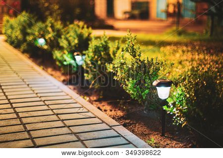 Night View Of Flowerbed Illuminated By Energy-saving Solar Powered Lanterns Along The Path Causeway