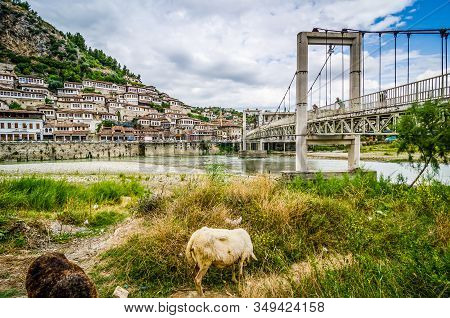 Berat, Albania - July 31, 2014. Bridge Over The River To The Old Town
