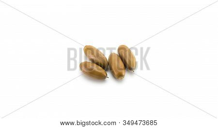 Acorns Without Caps On A Wite Background.