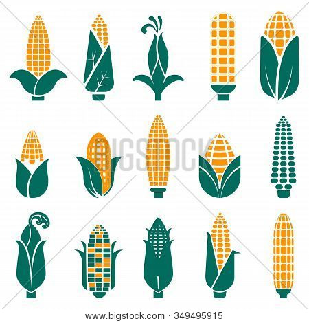 Sweet Corn Cobs Icons Collection In Abstract Graphic Style