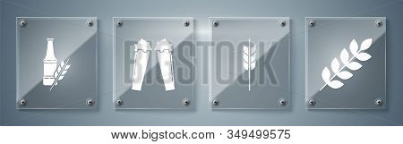 Set Cereals Set With Rice, Wheat, Corn, Oats, Rye, Barley, Cereals Set With Rice, Wheat, Corn, Oats,