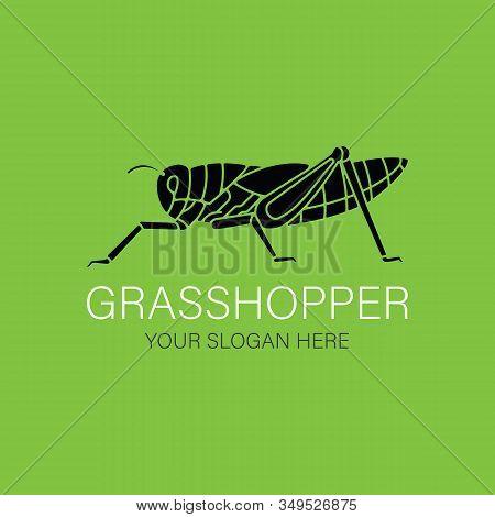 Grasshopper Logo Design Vector Template Silhouette Style. Black Icon. Creative Logotype Concept.