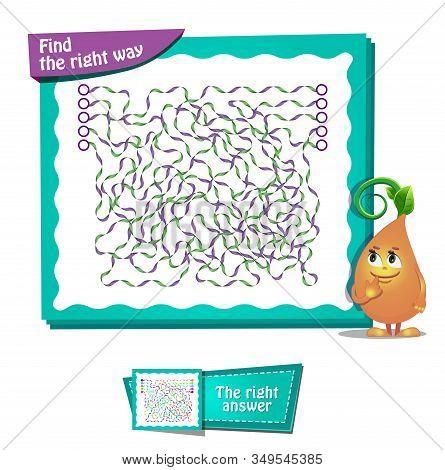 Find The Right Way  Maze   Brainteaser