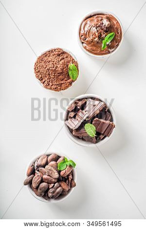 Different Conditions Of Cocoa. Various Cocoa - Beans, Beans, Ground, Crushed Cocoa Powder, Chocolate