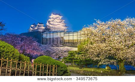 Himeji, Japan at Himeji Castle in spring with cherry blossoms at night.