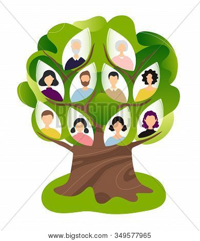 Family Genealogical Tree. Flat Modern Trendy Style.vector Illustration Character Icon. Isolated On W