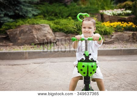 Cute Small Child Boy Riding A Green Trike With A Ladybird In The Park. Concept Of Happy Childhood