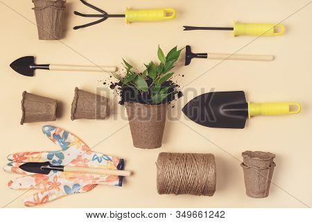 Flat Lay With Garden Tools Gardening Spring Or Summer Concept Yellow Gloves Garden Shovel Rake And T