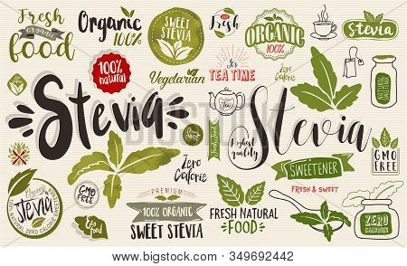 Stevia And Organic Food Label. Label And Vector Logo Element. Organic,bio, Ecology Natural Design Te