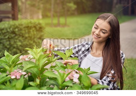 Selective Focus Of Young Smiling Female Gardener Using Small Scissors To Cut Lovely Bushes With Flow