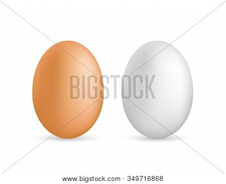 Two Vector Realistic White Eggs. Isolated Eggs On White Background. Vector Stock Illustration.