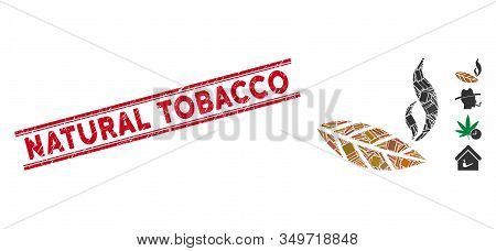 Mosaic Smoking Tobacco Leaf Icon And Red Natural Tobacco Seal Stamp Between Double Parallel Lines. F