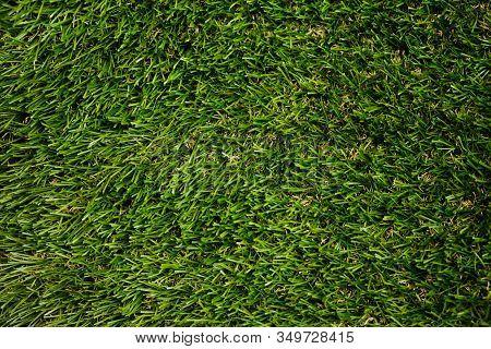 Artificial Grass Texture. Top View. Close Up.