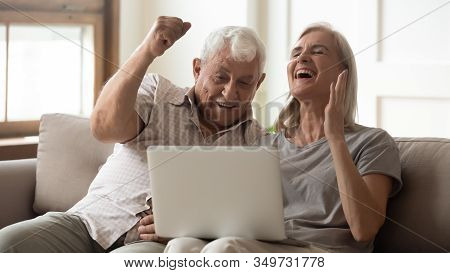 Overjoyed Senior Couple Triumph With Online News On Laptop