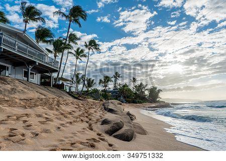 Sunset Beach, Hawaii/usa- Jan 1, 2020: Loss Of Yards And Homes Due To Beach Erosion On Sunset Beach,