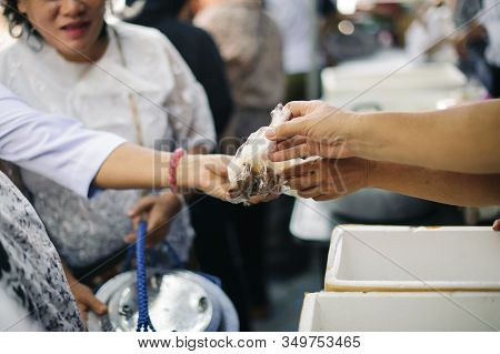 Hand Begging For Food From The Rich's Share : The Beggar Is Waiting For Food From Charity Aid : The