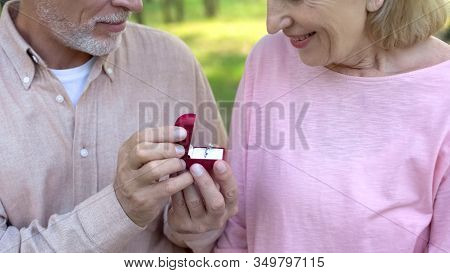 Senior Man Making Marriage Proposal To Lady, Dating Sites For Elder People