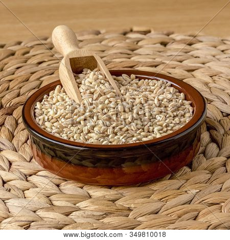 Pearl Barley, Or Pearled Barley, In A Scoop, In A Bowl. Full Focus On Bowl, Barley And Scoop.