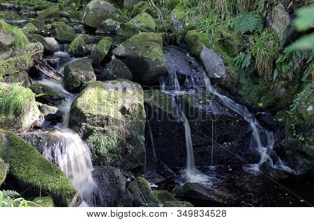 Small Forrest River And Waterfall Landscape