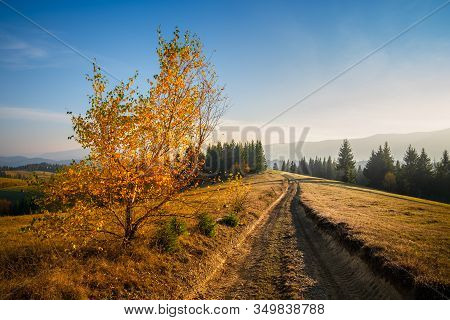View Of The Path In The Countryside. Path Going To Horizons. Sunny Day With Blue Sky In The Country.
