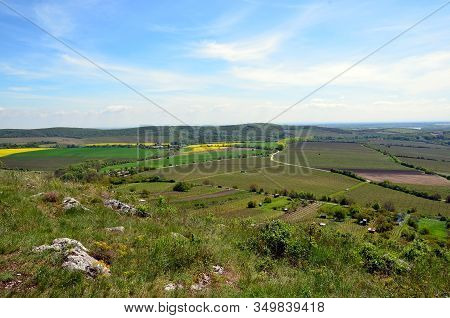 Summer Landscape With Grass And Field And Blue Sky