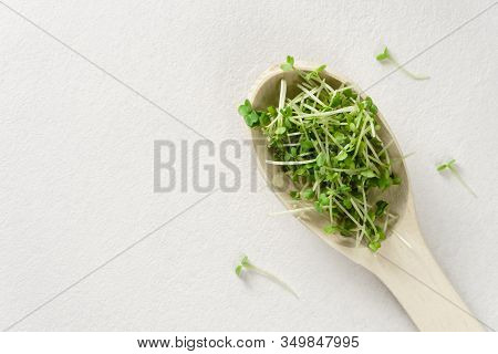 Fresh Micro Greens In A Wooden Spoon On A Light Gray Concrete Background. Top View, Horizontal Orien