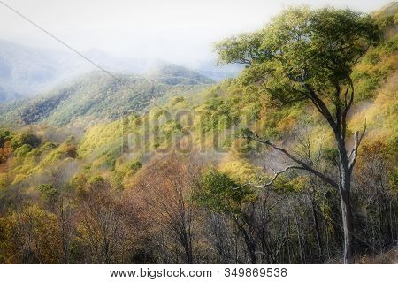 Mystic Autumn In The Appalachian Mountains Viewed Along The Blue Ridge Parkway