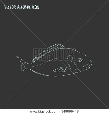 Aquatic Icon Line Element. Vector Illustration Of Aquatic Icon Line Isolated On Clean Background For