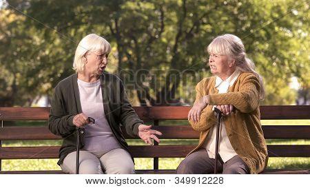 Two Senior Ladies Arguing And Sitting On Bench In Park, Grumpy Elders, Dispute