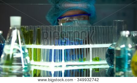 Chemist Checking Reaction In Test Tubes, Perfumery Extracts Analysis, Sediments