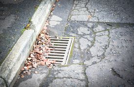 Crunchy Brown Autumn Leaves Scattered Atop A Slatted Street Gutter Next To The Curb