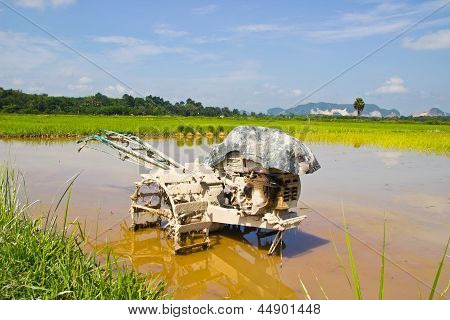 Motor plow in a rice field andagainst blue sky.thai