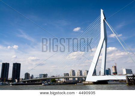 Meuse River And Erasmus Bridge