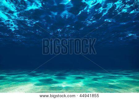 Ocean Bottom,  View Beneath Surface