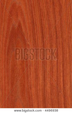 Mahogany (wood Texture)