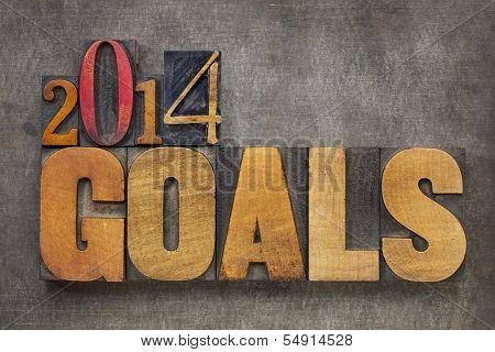 2014 goals - New Year resolution concept - text in vintage letterpress wood type blocks against grunge metal