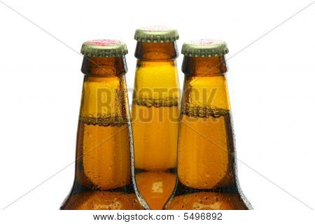 Bottles Of Beer