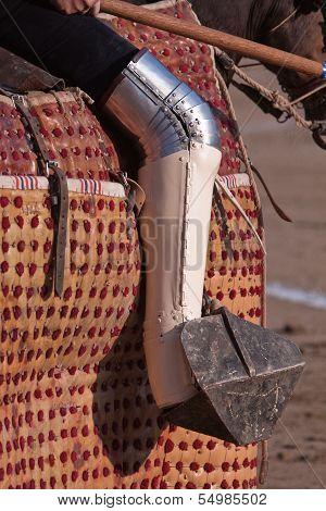 Picador bullfighter