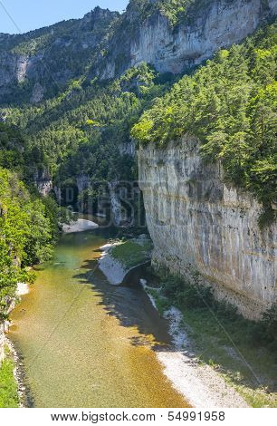 Gorges du Tarn (Lozere Linguedoc-Roussillon France) famous canyon at summer. poster