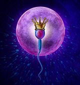 Winning sperm human Fertility concept with a close up of microscopic sperm or spermatozoa cell wearing a gold crown swimming towards a female egg cell to fertilize and create a successful pregnancy as a medical reproduction symbol. poster