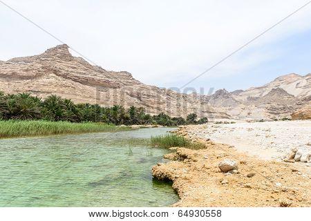 Oasis Near Route 49, Dhofar (oman)