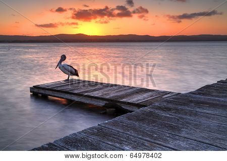 Sunset At Long Jetty, Nsw Australia