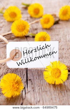 Yellow Flowers With Herzlich Willkommen